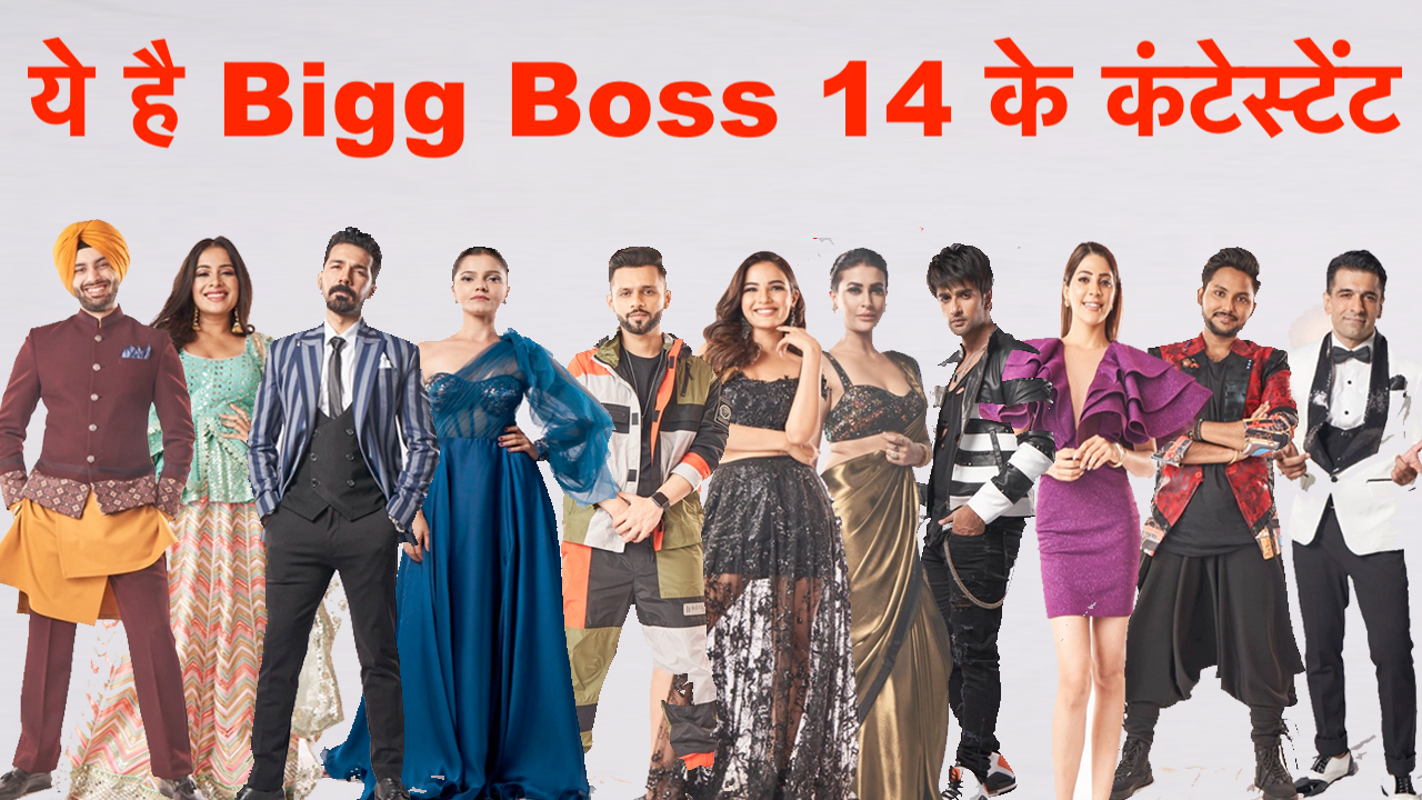bigg boss 14 contestants list with photos
